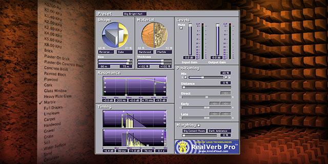 RealVerb Pro