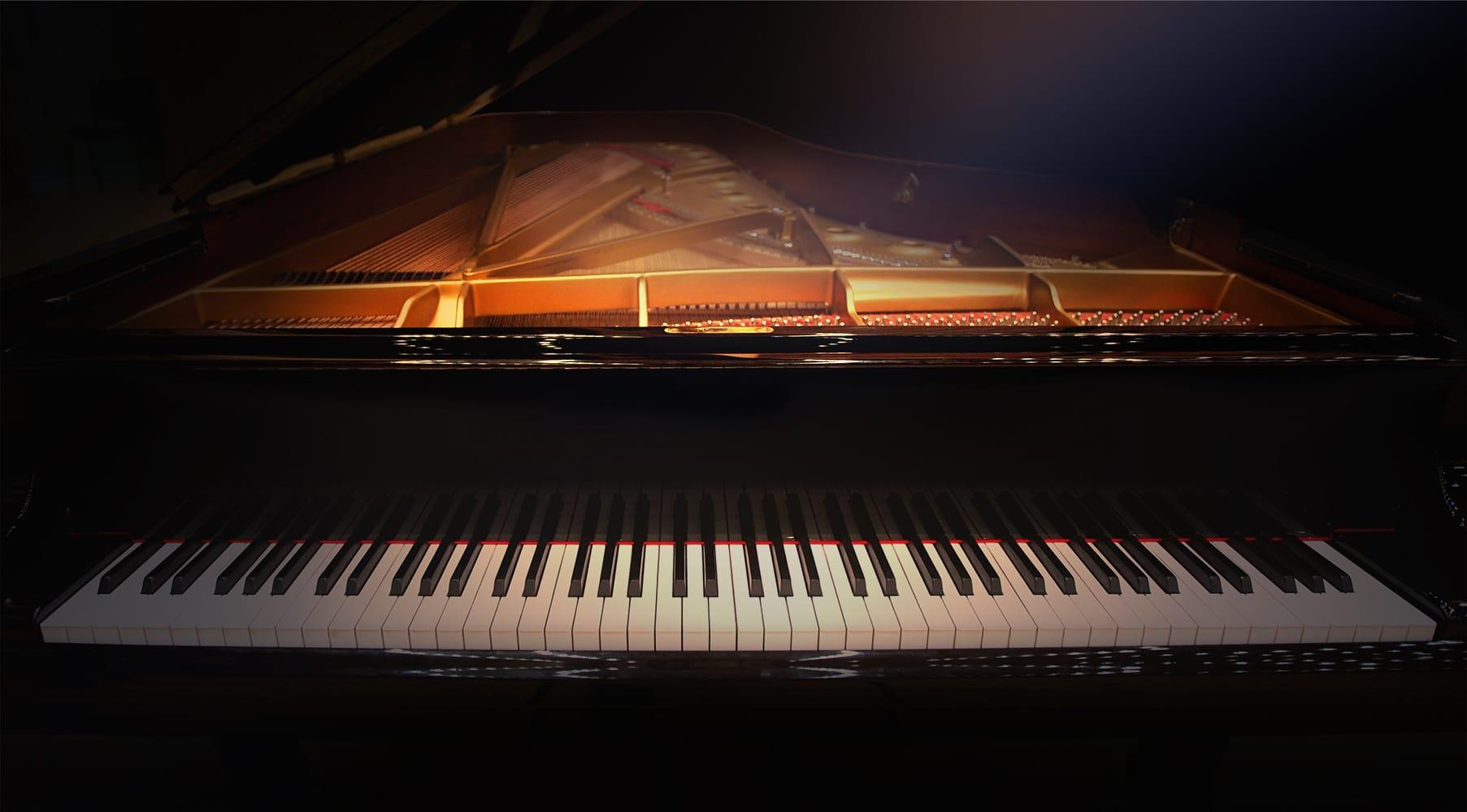 Ravel™